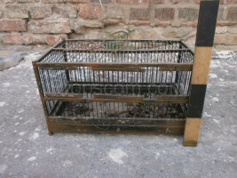 Metal cage black