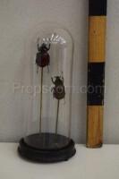 Flask with beetles